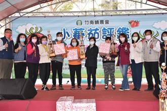 竹南鎮農會舉辦小蕃茄比賽促銷會
