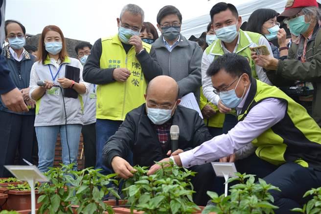 行政院長蘇貞昌到農改所樹林分場視察,希望農委會跨域整合,將農改場技術擴大發揮。(記者蔡雯如攝)