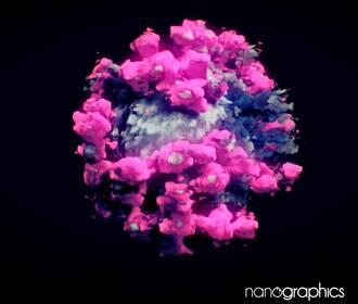 影》新冠病毒3D影像首公開 奪走全球212萬人命 真面目意外美翻