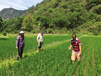 大倉米鋪 用四招創新營運