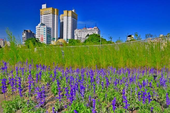 台中市柳川整治及環境改善工程療癒花園。(台中市水利局提供/王文吉台中傳真)