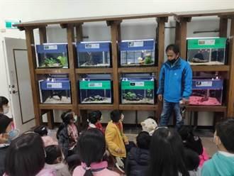 培育原生魚種 花蓮水培所打造食魚教育基地