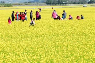 春節遊台東 縣府呼籲做好防疫措施