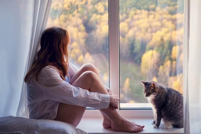 國外一名女飼主發現牠的貓咪如果看到她哭,會想辦法安慰她。(示意圖/達志影像)