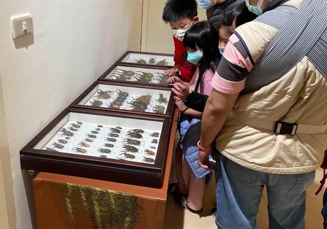 為喜迎金牛年,新竹SOGO首次舉辦甲蟲生態展。(SOGO提供/陳育賢新竹傳真)