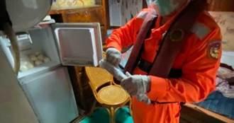 遠洋漁船藏10支「巨根」走私 陸籍輪機長:泡酒養身