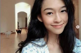 越南嫩女模撞脸章子怡美呆了 网看傻:根本一模一样