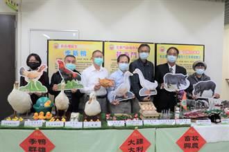 畜試所新品種季新鴨 可為產業年省3000萬人工授精費用