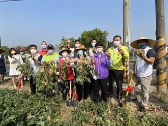 最接氣地的農事體驗 台南仁德「中洲樂農遊」召喚你