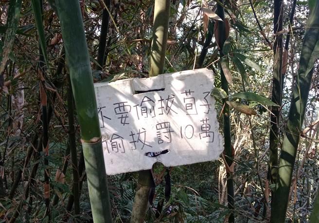 农民写告示牌警告偷笋贼,误将笋子写成「荀子」,让网友看了全笑歪:太不尊重古人了。(图/原PO提供)