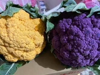 人妻全聯見彩色蔬菜 網一看超驚喜:是抗氧聖品