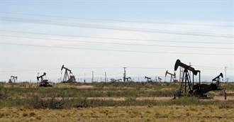 拜登暂停美国境内油气钻探许可 石油业者震惊