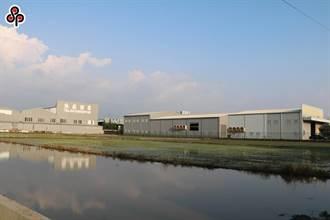 農地工廠想聘7000名移工 勞動部政策小組:請輔導成正式工廠