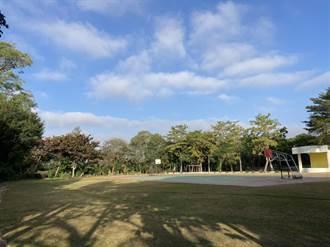台南校園種2034棵樹 養樹難各校靠自己
