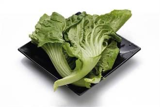 吃「長年菜」象徵長壽 服抗凝血劑患者吃多恐短命