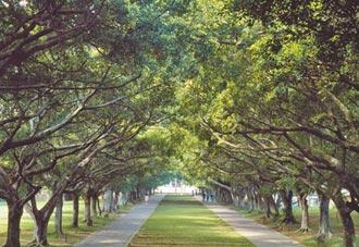 東海大學早期校園 登錄文化景觀