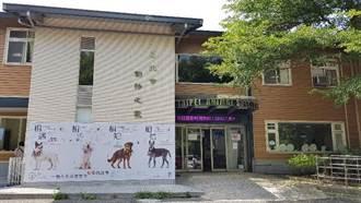 北市動物之家除夕起連休5日 連假首日及初五開放參訪