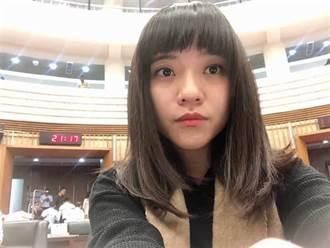 趙少康重回國民黨後 陳揮文斷言:將對罷捷產生決定性影響