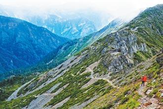 登山不走捷徑 保護南湖碎雪草