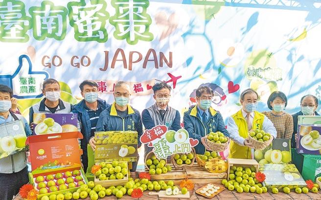 台南市楠西區品利農場生產的蜜棗是銷日大宗,南市府農業局昨日舉行記者會行銷。(莊曜聰攝)