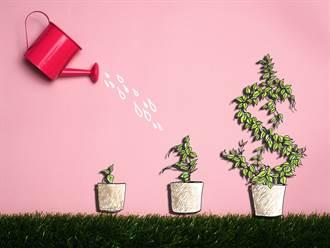 投資型保單現熱潮 該怎麼買?內行給你建議