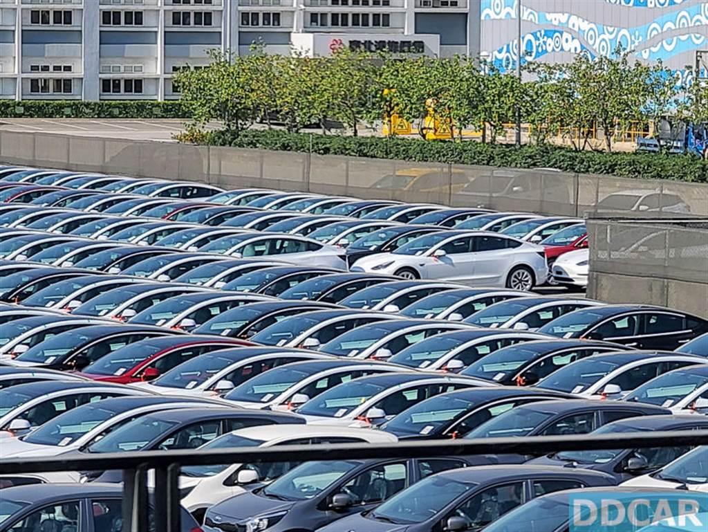 台灣特斯拉 2021 年第一季新車到港!一眼望不盡的 Model 3 車海陣容,農曆年後開始交車