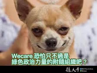 Wecare挺黃捷 孫大千:綠色政治力量的附隨組織