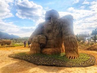 富里稻草藝術季開跑 周末過年富麗富里好市集與遊客同樂