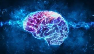 大腦視丘受低強度超音波刺激 有機會喚醒昏迷者