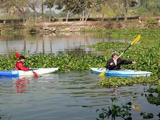划獨木舟清布袋蓮 中正大學教授帶學生走進社區