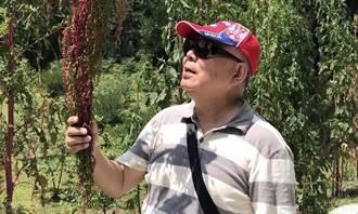 左化鵬》近代史上最傳奇人物 五木先生