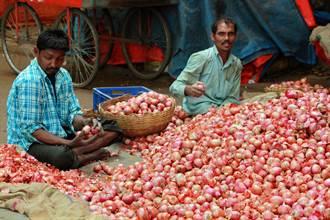 能左右印度政治的神奇蔬菜 每年固定發生漲價危機政府挨批