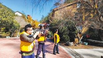 武陵迎櫻花季 5天嚇走500多隻獼猴