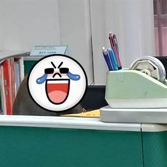 獼猴闖中山大學扮教授加班 網笑歪:工讀生快出來