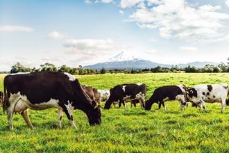 乳品專家豐力富 打造高營養牛奶