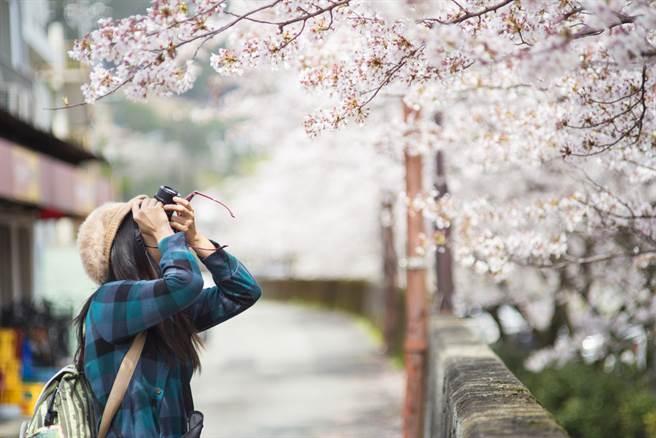 許多人關心何時可再去日本玩,前台大醫曝樂觀時間點,指出若出現變數,可能會害疫情延長。(圖/Shutterstock)