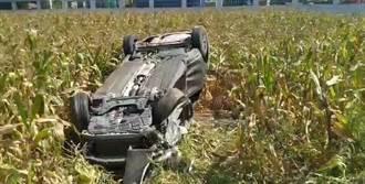 嘉義太保2車擦撞 1車衝入玉米田、2駕駛僅輕傷