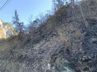 中横便道山林火灾 一夜烧毁0.8公顷持续抢救中
