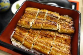 日本百年鰻魚飯香噴上市 旗艦店微風北車開幕