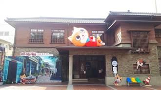 復刻《小貓巴克里》 台南打造春節最夯小貓基地景點