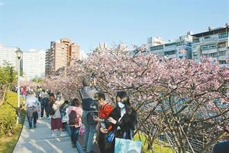 「台北旅遊警示燈號」10日推出 19處北市熱門景點人潮一次掌握
