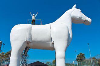 白馬駕到 紙風車新把戲