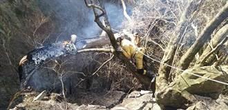陆空联手熄灭中横便道森林火灾 燃烧面积0.8公顷