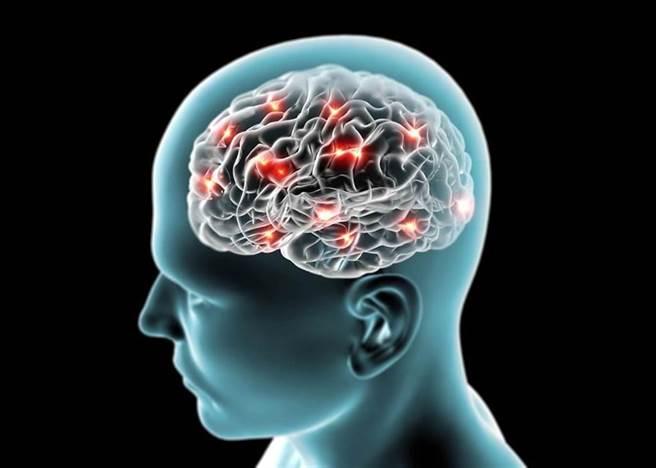 抵銷3C對腦細胞傷害 先強化粒線體!必知強健大腦4要素。(示意圖/Shutterstock)