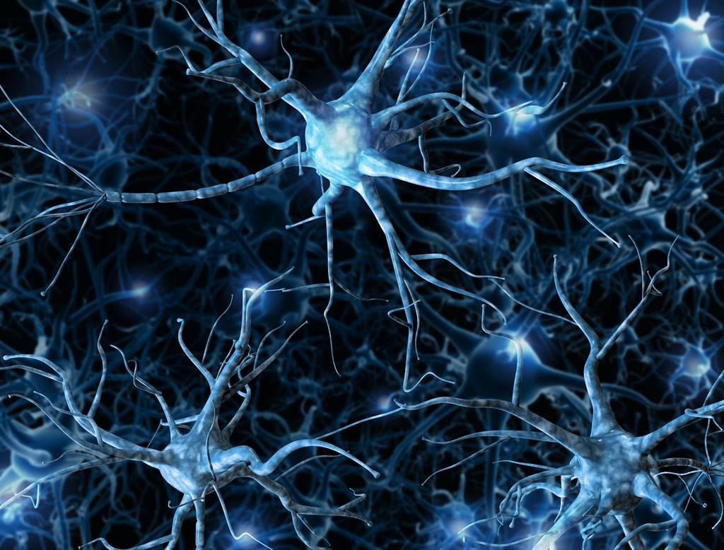 德国研究团队证实,「一天一苹果,医生远离我」是真的。苹果有助于神经增殖,进而强化脑部学习与记忆能力,防止阿兹海默等失智症的发生。图/Shutterstock(photo:ChinaTimes)