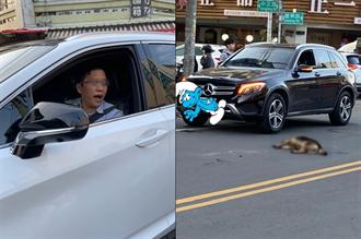 駕名車輾死狗嗆只是畜生 車主遭肉搜急道歉:夫妻吵架口氣不好