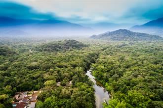 亞馬遜河驚現絕美「黃金河」NASA痛揭背後醜陋真相