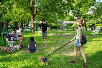新北17座寵物公園年節均開放 帶毛寶貝走春