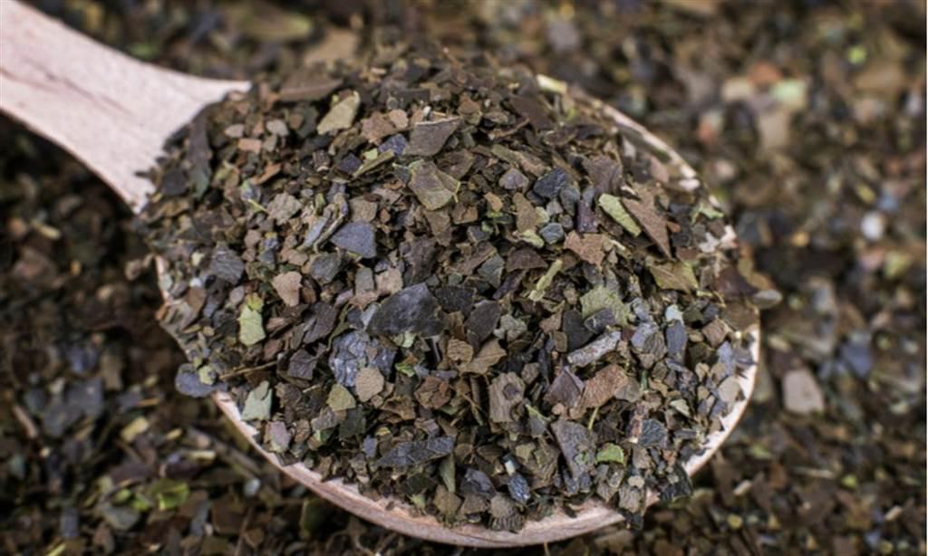 有助提神、抗氧化「亞馬遜苦丁茶」將登台 食藥署:3族群避免飲用。(示意圖/Shutterstock)