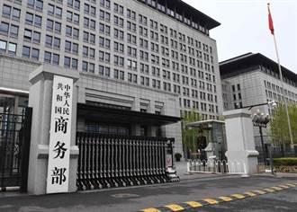 WTO任命新任總幹事 陸商務部盼:推動必要改革